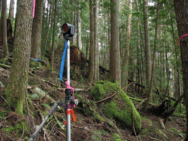land surveying | land surveyor